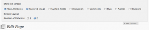 Edit Page Screen Options Screenshot