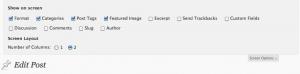 Edit Post Screen Options Screenshot
